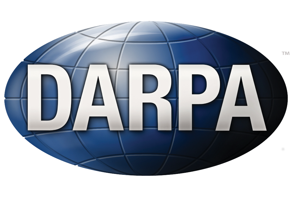 DARPA: a hardware-based embedded line of defense at the core